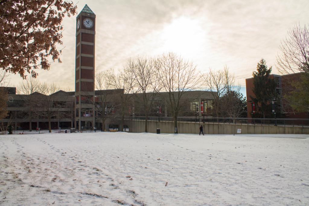 Snow 3-1
