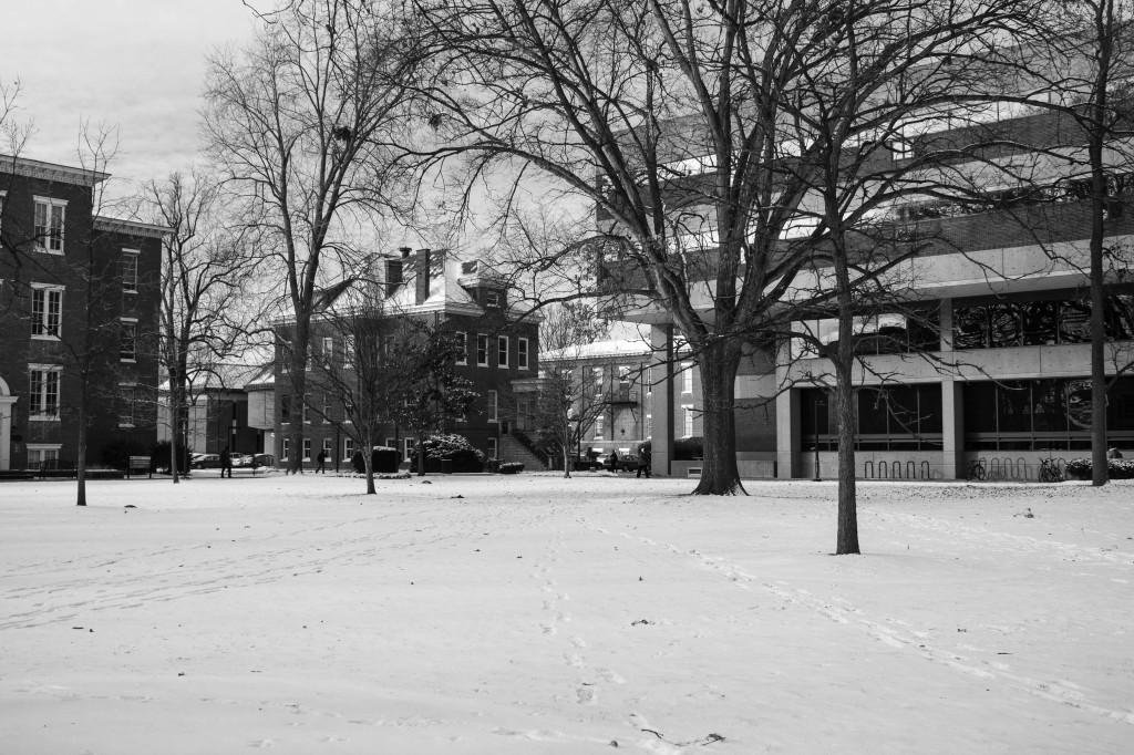 Snow 1-1