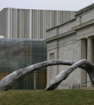 Speed Art Museum's new north building and wishbone sculpture.