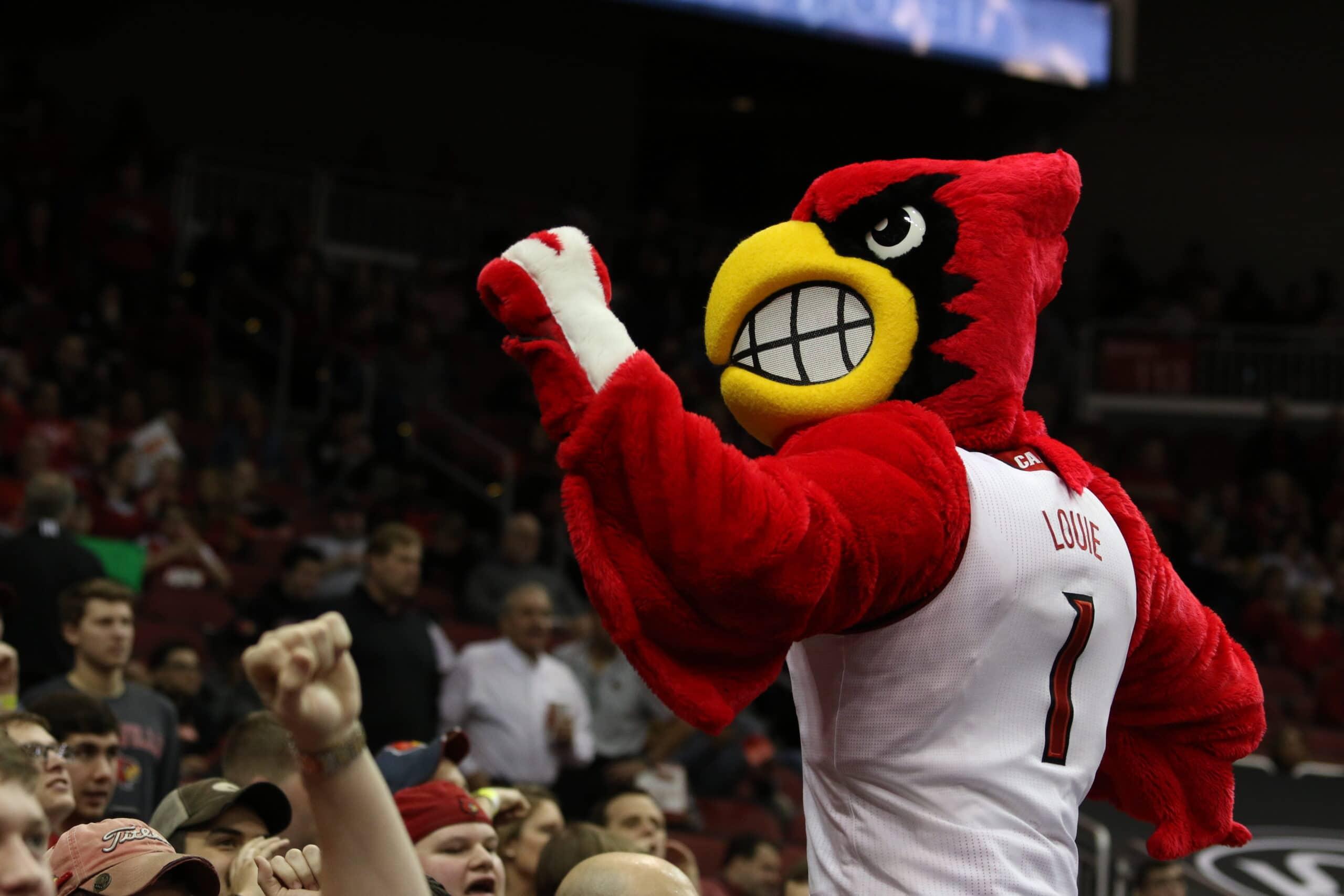 Louie the Cardinal