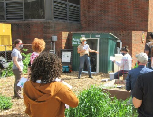 University's Garden Commons aims to educate and address food inequality